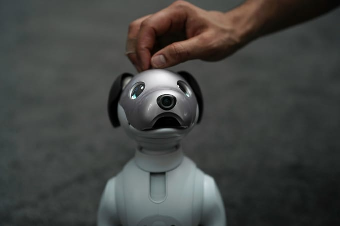The latest generation of the Sony robotic pet, Aibo, is on display during a press event for CES 2018
