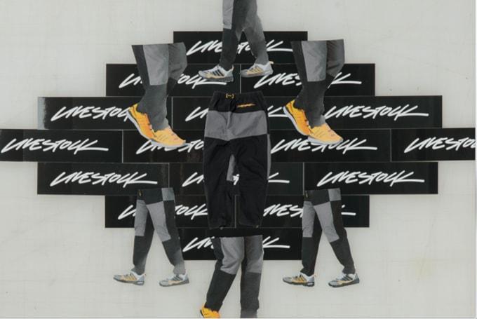 livestock-adidas-arcteryx-05
