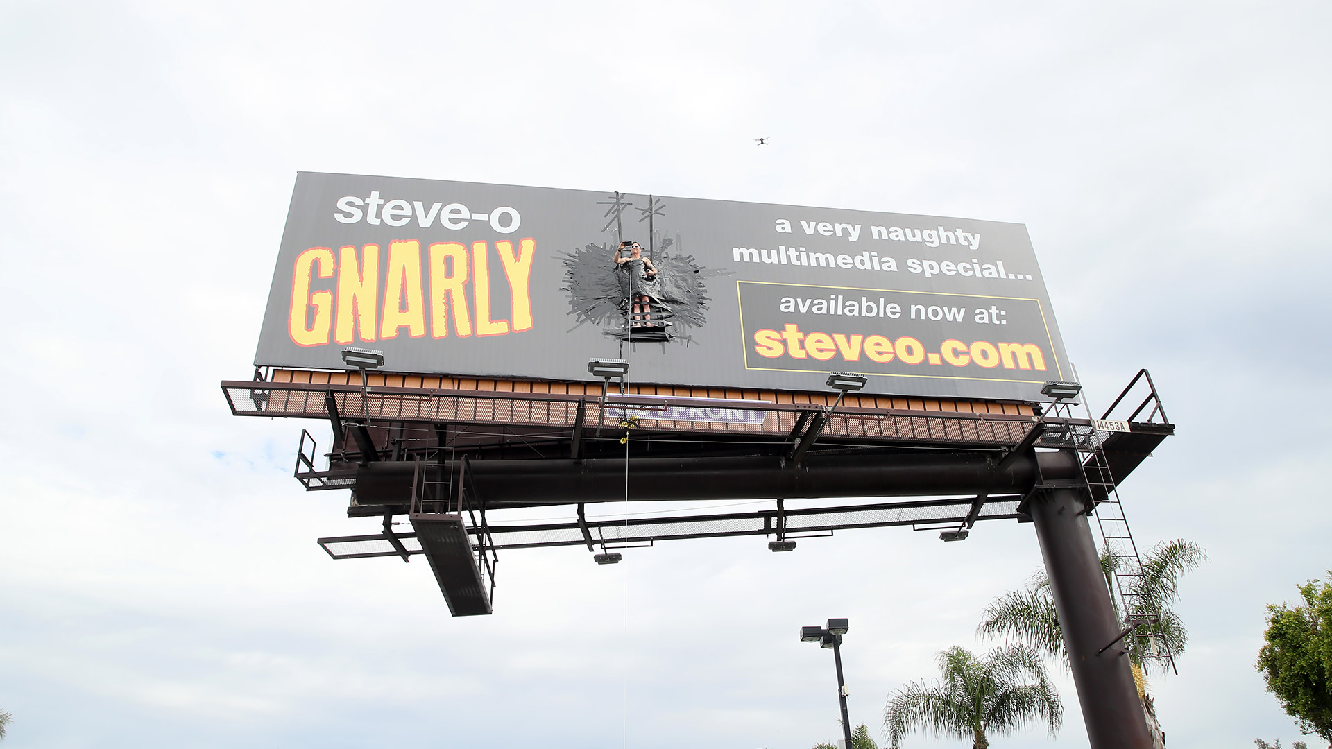 Steve-O Taped Himself to a Billboard to Promote His New Comedy Special