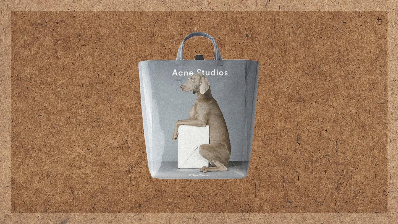 Luke Fracher 10 Things Acne Studios Dog Bag